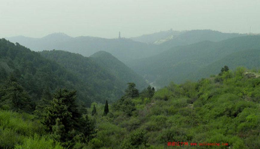 沈阳国家森林公园