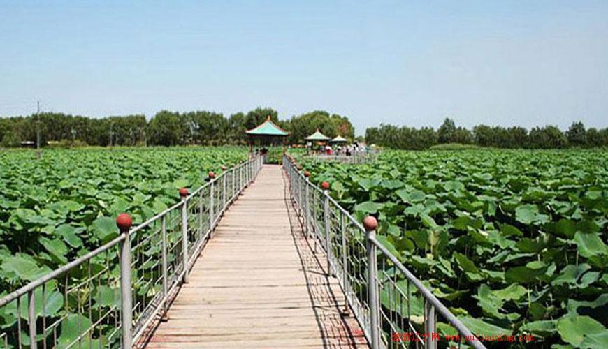 仙子湖风景旅游度假区