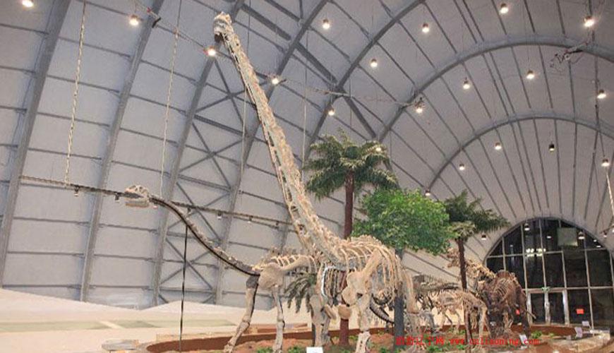 辽宁古生物博物馆