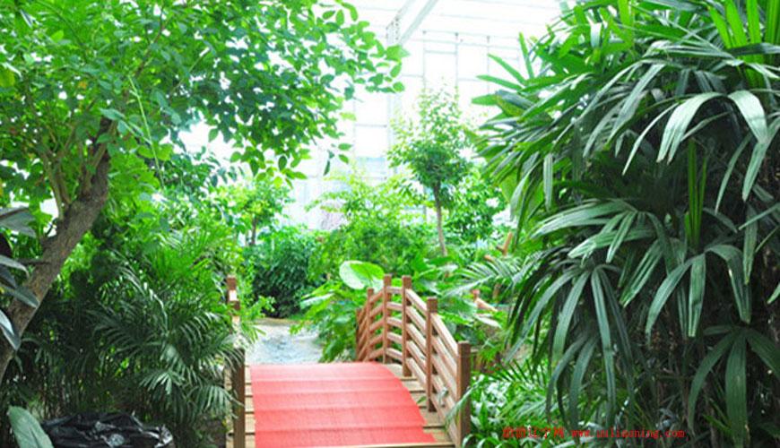 绿中海温泉度假村