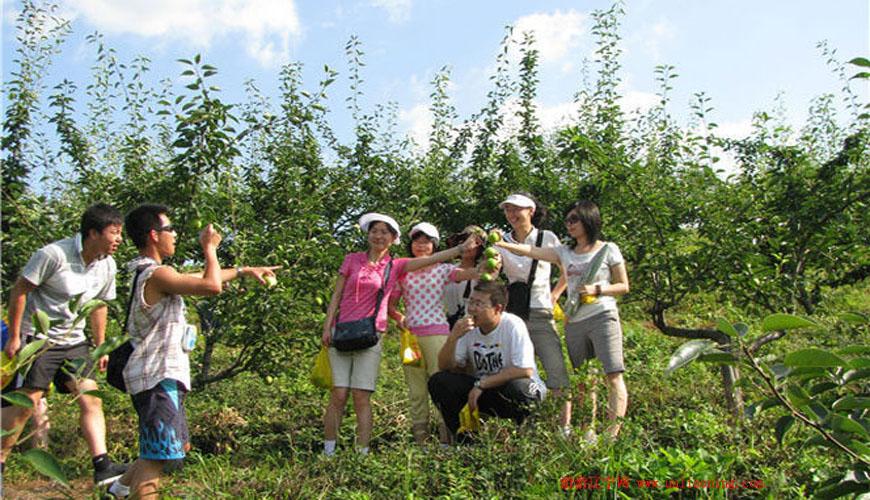 凤城大梨树风景名胜区