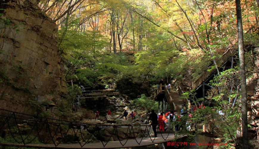 枫林谷森林公园