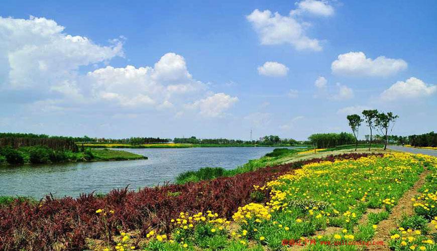 蒲河生态廊道(沈北段)