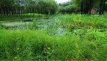 蒲河国家湿地公园