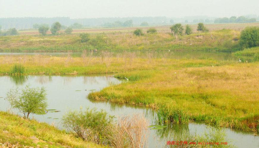 辽河七星湿地公园