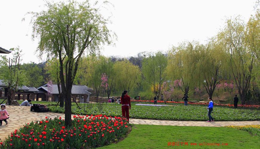 大连英歌石植物园
